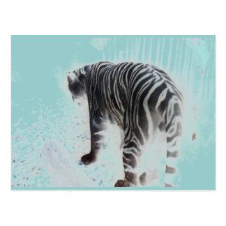 Carte Postale Animal sauvage de tigre blanc