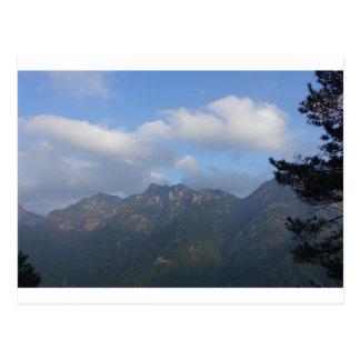Carte Postale arbre de colline de montagne