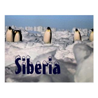 Carte postale arctique d'hiver de la Sibérie