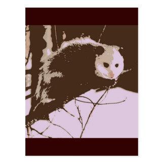 Carte Postale Art de bruit d'opossum