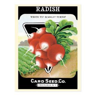 Carte Postale Art vintage d'étiquette de paquet de graine, radis