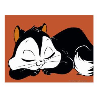 Carte Postale Atermoyez Kitty somnolent