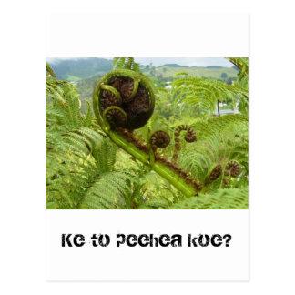 Carte Postale Au-dessus de l'auvent : Kiwiana