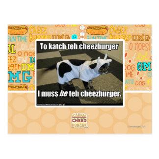 Carte Postale Au katch le cheezburger