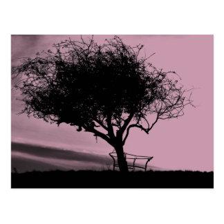 Carte Postale Aubépine de Glastonbury. Arbre sur la colline.