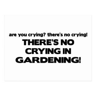 Carte Postale Aucun pleurer - faisant du jardinage