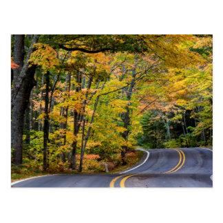 Carte Postale Auvent d'automne de couleur le long de la route 41