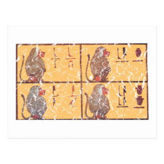 Carte Postale babouins