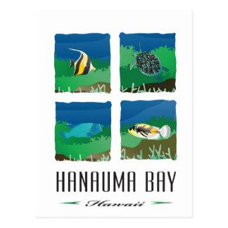 Carte Postale Baie Hawaï - de Hanauma vacances 2014