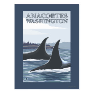 Carte Postale Baleines #1 - Anacortes, Washington d'orque