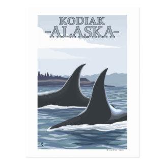 Carte Postale Baleines #1 - Kodiak, Alaska d'orque