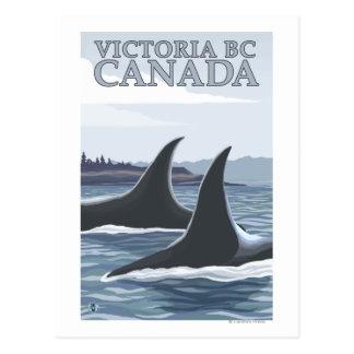 Carte Postale Baleines #1 - Victoria, AVANT JÉSUS CHRIST Canada