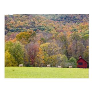 Carte Postale Balles et feuillage d'automne de foin, à une ferme