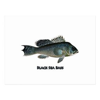 Carte Postale Basse de la Mer Noire