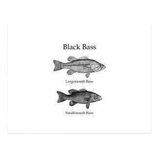 Carte Postale Basse noire (schéma)