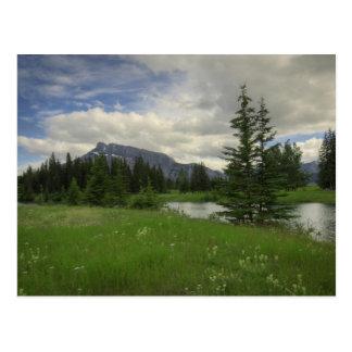 Carte Postale Bâti Rundle des étangs de cascade