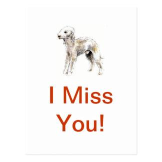 Carte Postale Bedlington Terrier