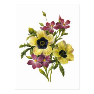 Carte Postale Bégonia et bouquet pourpre de Redoute de