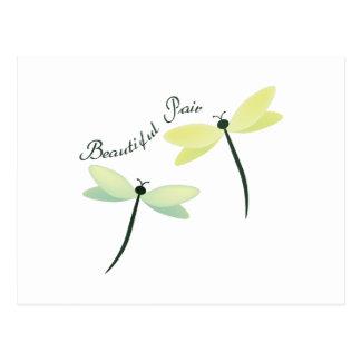 Carte Postale Belles paires