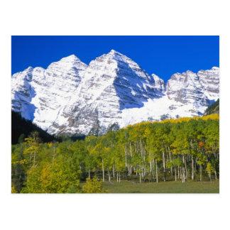 Carte Postale Bells marron avec la forêt de tremble d'automne