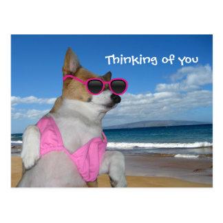 Carte Postale Bikini drôle de corgi