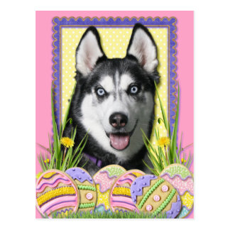 Carte Postale Biscuits d'oeuf de pâques - chien de traîneau