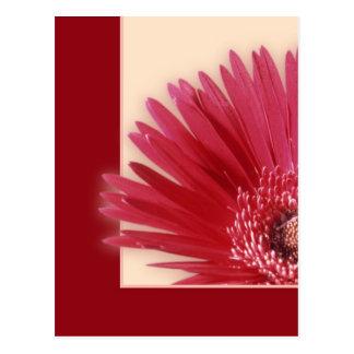 Carte Postale Blanc quart de Daisyb