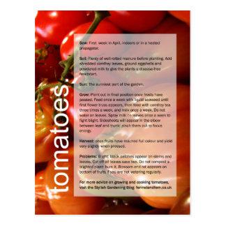 Carte Postale Bon guide croissant : Tomates et ail