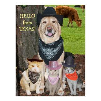 Carte Postale Bonjour du Texas !