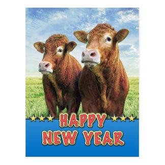 Carte Postale BONNE ANNÉE avec les garçons de vache