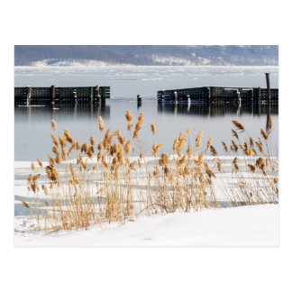 Carte Postale Brise-lames dans le fleuve Hudson glacial
