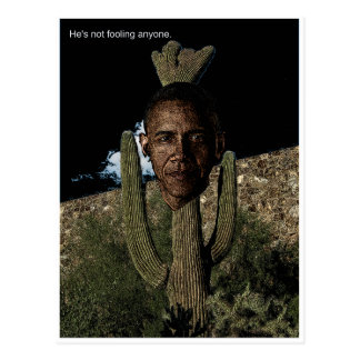 Carte Postale Cactus d'Obama
