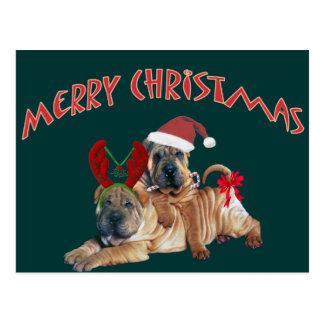 Carte Postale Cadeaux de Joyeux Noël de Shar-pei de Chinois