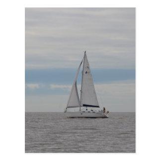 Carte Postale Cadeaux de moineau de yacht