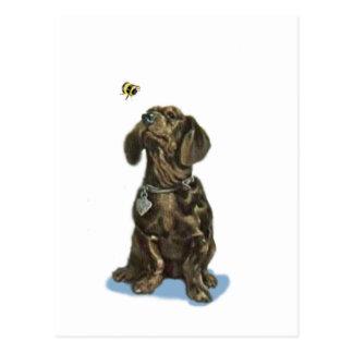 Carte Postale Cadeaux vintages d'art de teckel et d'abeille de