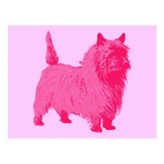 Carte Postale Cairn Terrier rose