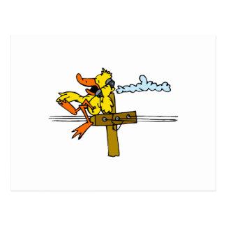 Carte Postale Canard de démenti