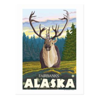 Carte Postale Caribou dans le sauvage - Fairbanks, Alaska
