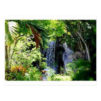 Carte Postale Cascade des Bahamas