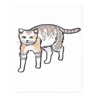 CARTE POSTALE CAT DE SABLE