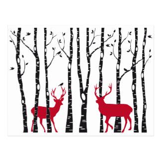 Carte Postale Cerfs communs rouges dans la forêt d'arbre de