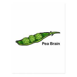 Carte Postale Cerveau de pois