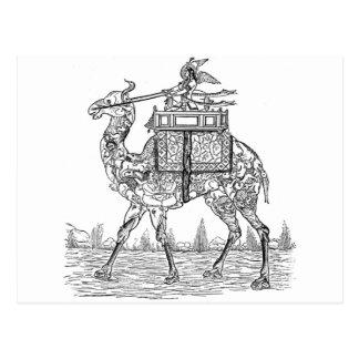 Carte Postale Chameau