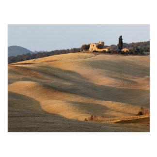 Carte Postale Champ agricole au coucher du soleil, d'Orcia de