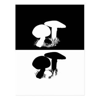 Carte Postale champignon