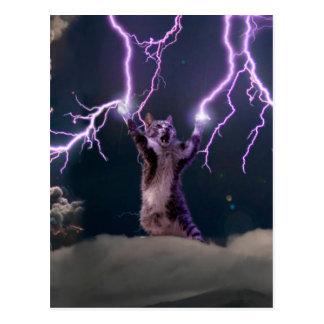 Carte Postale Chat de foudre--chat de Kitty-animal-félin-animal