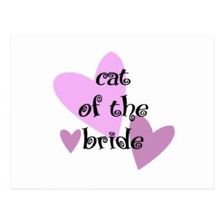 Carte Postale Chat de la jeune mariée