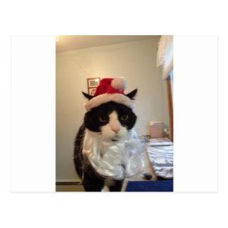 Carte Postale Chat de Père Noël Benny