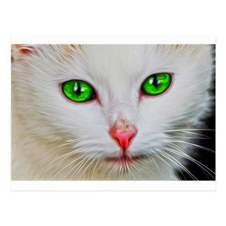 Carte Postale Chat de yeux verts