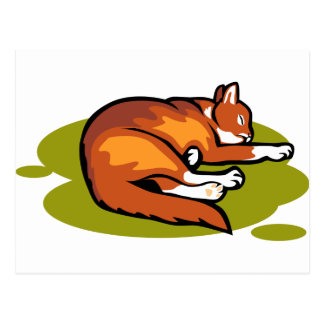 Carte Postale Chat orange